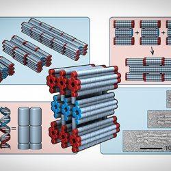 چگونه فرآیند تولید نانوربات با استفاده از DNA بهتر کنترل شود؟