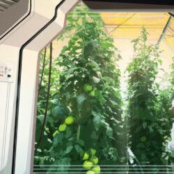 افزایش تولید محصولات کشاورزی در فضا با فناوری نانو