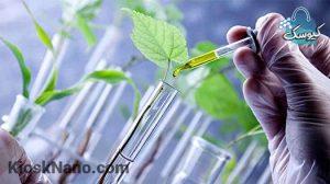 فناوری نانو در محصولات کشاورزی چه کاربرد هایی دارد ؟ معرفی فناوری نانو به زبان ساده